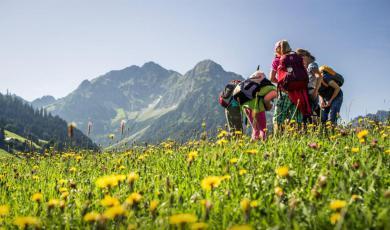 Sommerurlaub Angebote Kleinwalsertal Ferienwohnung 2 bis 4 personen mit Kindern Sommer-Bergbahnticket 2018 inklusive Oberstdorf - Kleinwalsertal